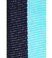 Schwarz-Lichtblau