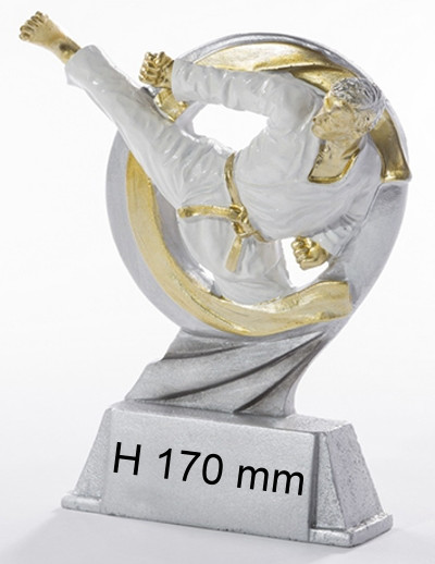 Karate Trophäe ST-39329