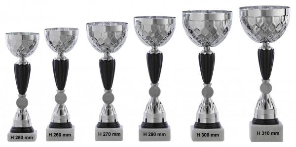Pokale 6er Serie RF-A1071.1 - A1071.6