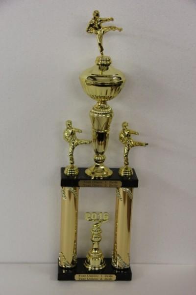Säulenpokal Chuck Gold/Blau, Kampfsport