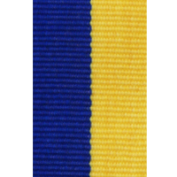 ribbon_with_clip_blueyellow