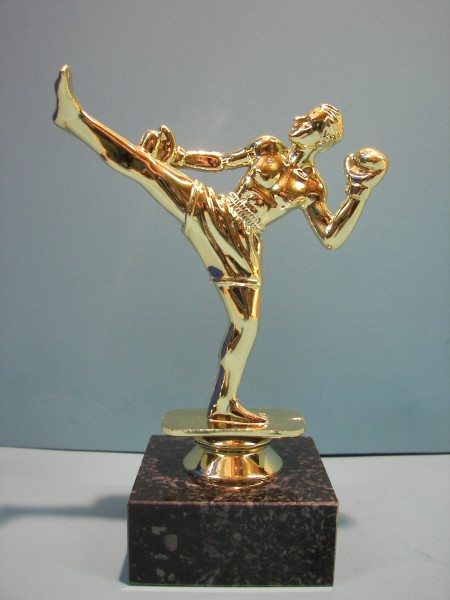 Kickboxer Figur, TR-F155T