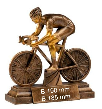3er Serie Herren Radsport-Trophäe ST39655-57